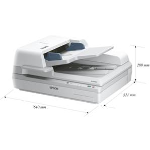 EPSON DS-60000N - Scanner - A3